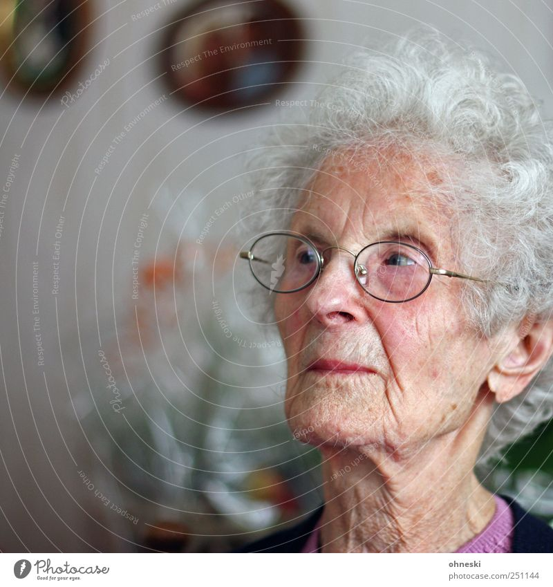 skepticism Human being Female senior Woman Grandmother Senior citizen Head Face 1 60 years and older Old Concern Skeptical Thought Meditative Ambiguous Wrinkle