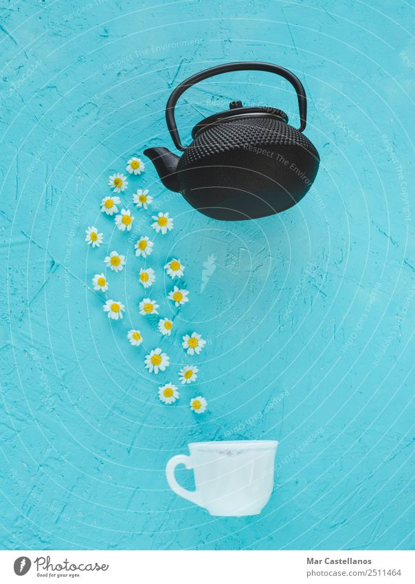 Chamomile flowers emerging from a teapot Herbs and spices Medical treatment Medication Calm Summer Table Gardening Environment Nature Plant Flower Leaf Natural