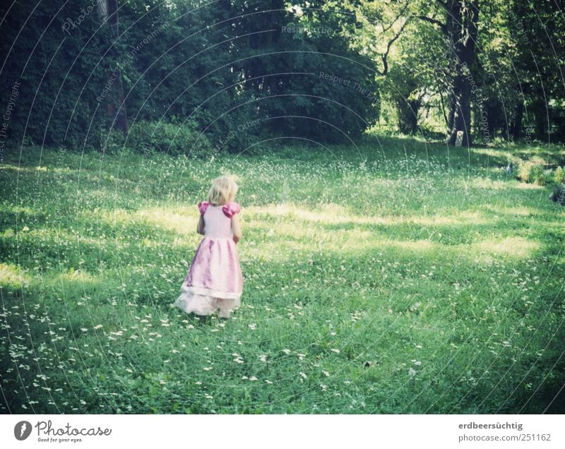Child Tree Playing Grass Small Garden Infancy Blonde Pink Walking Bushes Cute Dress Delicate Fantastic Fairy tale