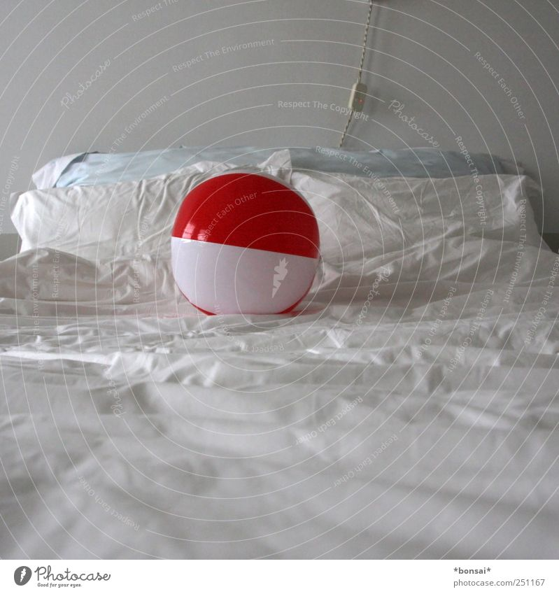 White Vacation & Travel Red Joy Relaxation Playing Infancy Wild Lie Design Fresh Cable Warm-heartedness Bed Round Simple