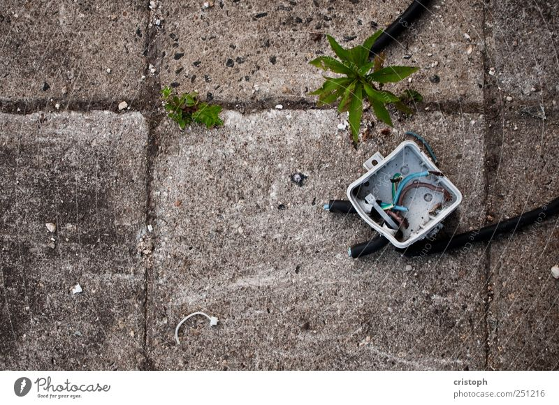stream Deserted Ruin Decline Transience Cable Socket Detail Abstract Structures and shapes