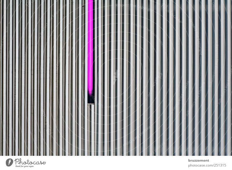 Mace Windu Measuring instrument Illuminate Violet Facade Cladding Vertical Furrow Neon light Neon lamp Wall cladding Colour photo Exterior shot Copy Space left