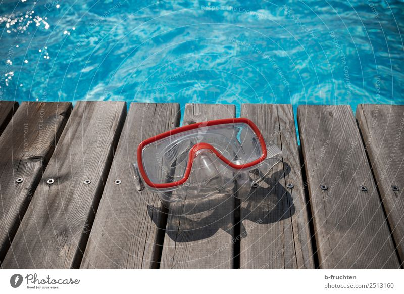 diving goggles Life Swimming pool Swimming & Bathing Vacation & Travel Summer vacation Sunlight Eyeglasses Leisure and hobbies Joy Diving goggles Dive Blue
