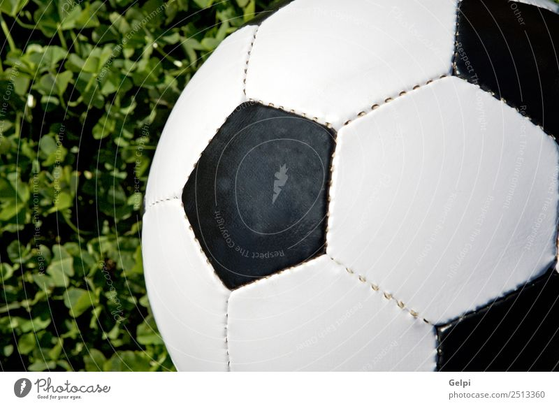 Soccer ball Joy Happy Life Leisure and hobbies Playing Sports Success Stadium Earth Grass Lanes & trails Leather Sphere Green Black White Competition football