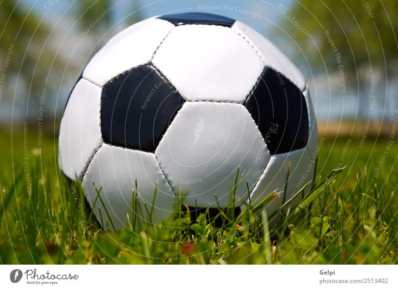 Soccer ball Green White Joy Black Sports Grass Playing School Park Action Lawn Ball Competition Leather Stadium