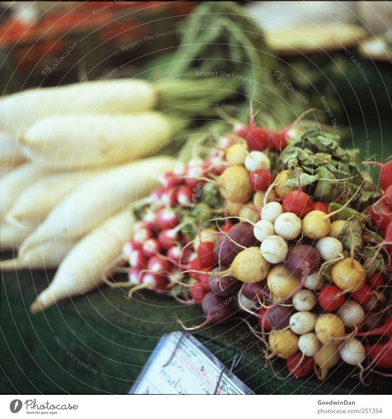 Nutrition Food Round Vegetable Delicious Fragrance Blanket Exotic Juicy Marketplace Market stall Radish