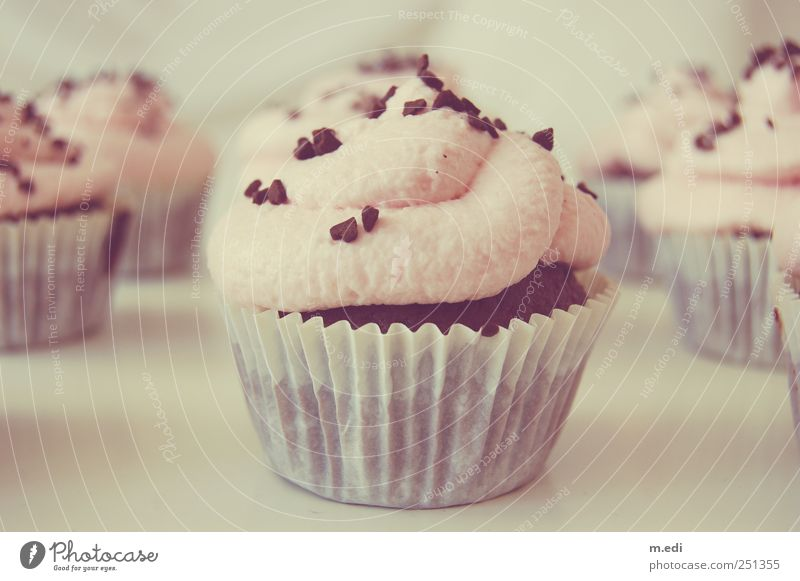 Beautiful Sweet Good Uniqueness Candy Hip & trendy Dessert Muffin