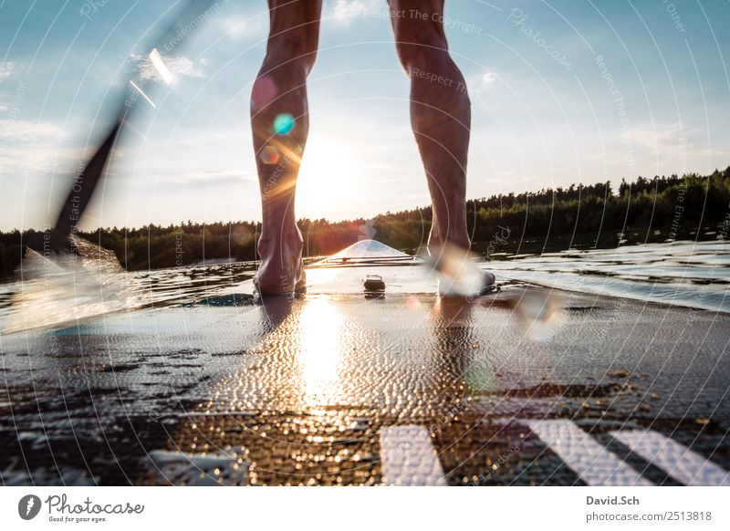 Partial view of Stand-Up-Paddler in action Athletic Fitness Summer Summer vacation Sun Sports Aquatics Human being Masculine Man Adults Legs Feet 1 Movement