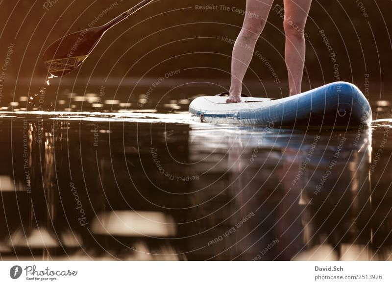 Partial view of Stand-Up-Paddler in action Leisure and hobbies Summer Summer vacation Sports Aquatics Feminine Woman Adults Legs Feet 1 Human being Lake River