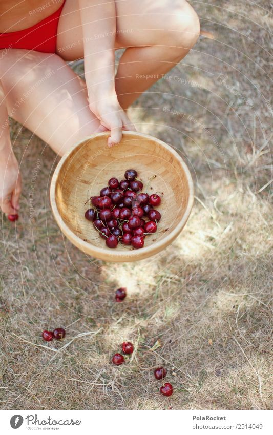 #A# Good cherry food Art Esthetic Cherry Cherry tree Cherry pit Cherry juice Many Bowl Red Collection Accumulate Summer Summer vacation Summery Exterior shot