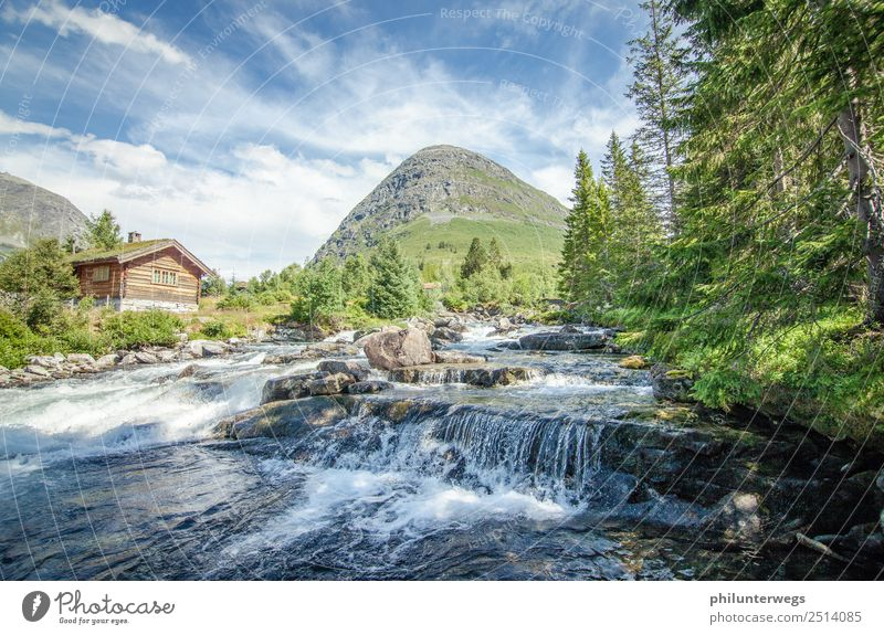 Cottage at a river in Norway in sunshine Vacation & Travel Trip Adventure Far-off places Freedom Expedition Camping Environment Nature Landscape Elements Water