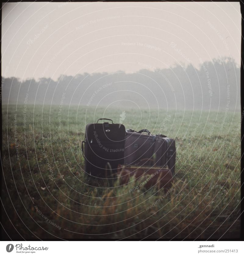 Nature Vacation & Travel Calm Meadow Environment Landscape Emotions Grass Fog Things Analog Frame Bag Placed Luggage