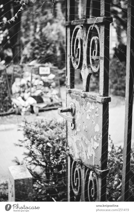 beginning of end Park Cemetery peaceable Door Entrance Gate Beginning Death Grief Transience Lose Wrought ironwork Black & white photo Exterior shot Detail