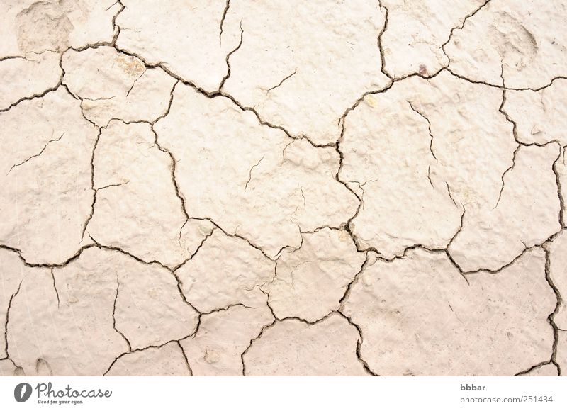 Dried and cracked earth Summer Environment Nature Landscape Earth Sand Climate Climate change Weather Drought Desert Dirty Hot Natural Brown Gray Death Disaster