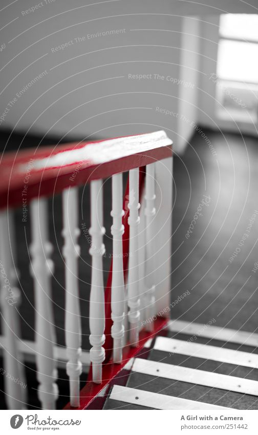 White Red House (Residential Structure) Black Wall (building) Window Wall (barrier) High-rise Stairs To hold on Narrow Banister Nostalgia Staircase (Hallway)
