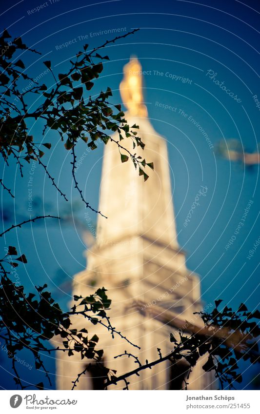 gold in blue Culture England Europe Downtown Tower Manmade structures Building Architecture Esthetic Gold Blue Blue sky Twigs and branches Silhouette Glittering
