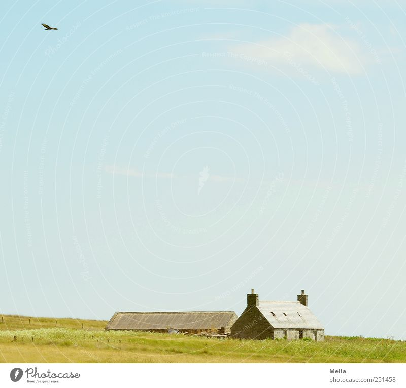 Wide Environment Landscape Sky Meadow Field Deserted House (Residential Structure) Building Farm Cottage Country house Old Blue Green Moody Loneliness Calm