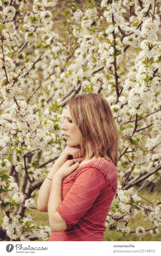 Cherry Blossom Girl Human being Feminine Young woman Youth (Young adults) Woman Adults 1 13 - 18 years 18 - 30 years 30 - 45 years Tree Flower