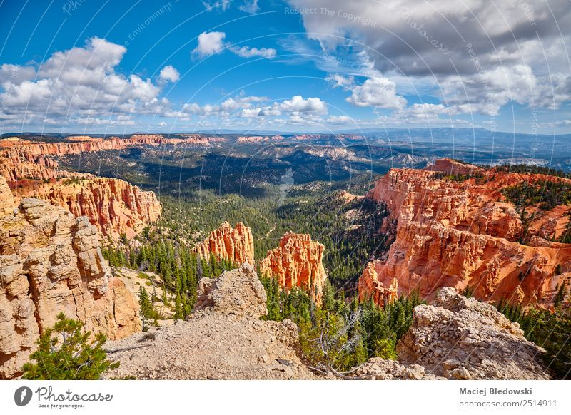 Bryce Canyon National Park, USA. Vacation & Travel Adventure Far-off places Freedom Expedition Camping Summer Summer vacation Mountain Hiking Nature Landscape