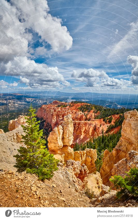Bryce Canyon National Park, Utah, USA Vacation & Travel Tourism Adventure Freedom Summer Mountain Hiking Nature Landscape Sky Tree Hill Rock Hoodoos panorama