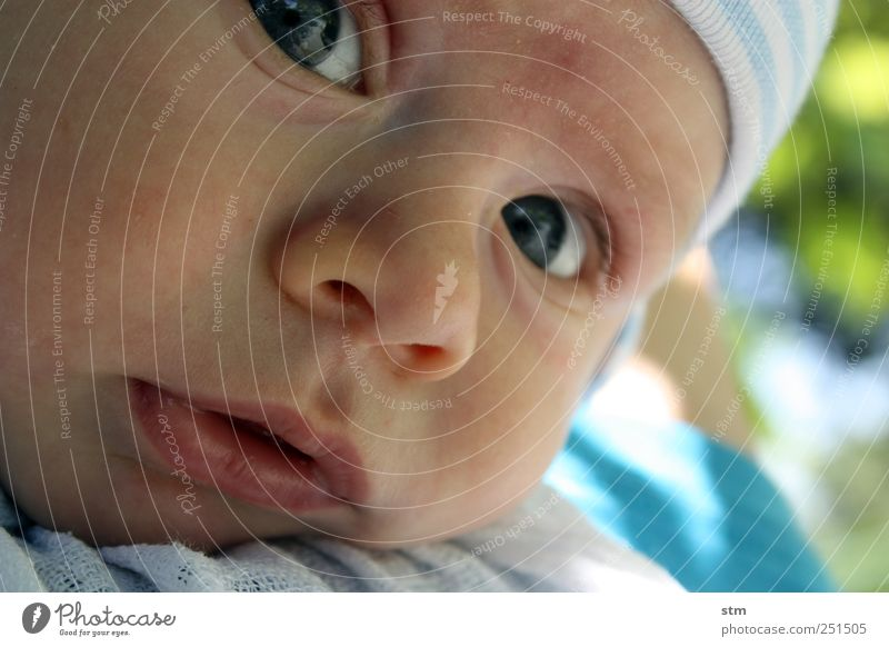 curiosity without end Human being Masculine Child Baby Toddler Boy (child) Infancy Skin Head Face Eyes Nose Mouth Lips 1 0 - 12 months Cap Observe Beautiful