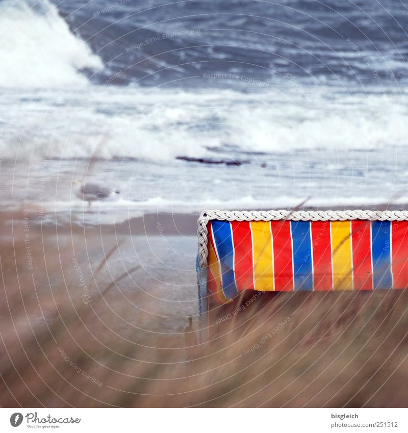 Water Blue White Red Beach Ocean Loneliness Yellow Coast Brown Waves Wind Transience Gale Common Reed Baltic Sea