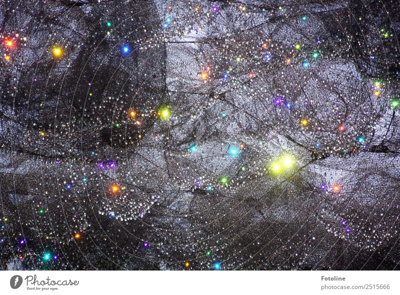fairy dance Art Party Exceptional Elegant Glittering Bright Near Modern Beautiful Multicoloured Gray Net Fairy Colour photo Subdued colour Exterior shot Detail
