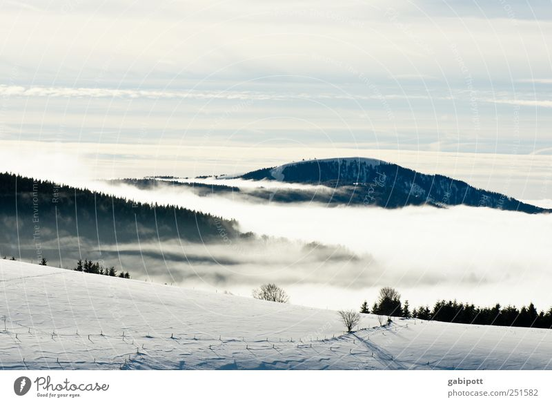 Winter in the Ländle Tourism Trip Far-off places Snow Mountain Hiking Environment Nature Sky Clouds Weather Beautiful weather Fog Ice Frost Cold Blue White