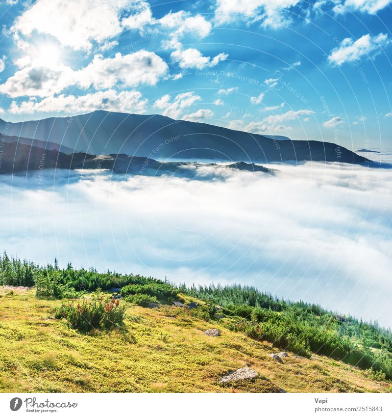 Green mountains in the clouds Beautiful Vacation & Travel Tourism Freedom Summer Summer vacation Sun Mountain Hiking Environment Nature Landscape Sky Clouds