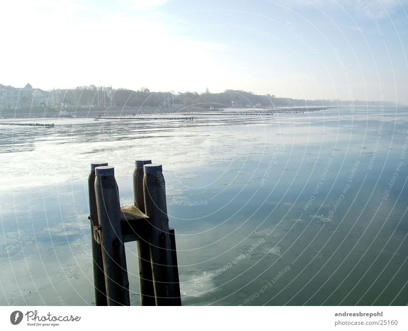Water Sky Winter Cold Ice Bird Coast Bridge Frost Frozen Baltic Sea Surf Real estate Break water Ice floe