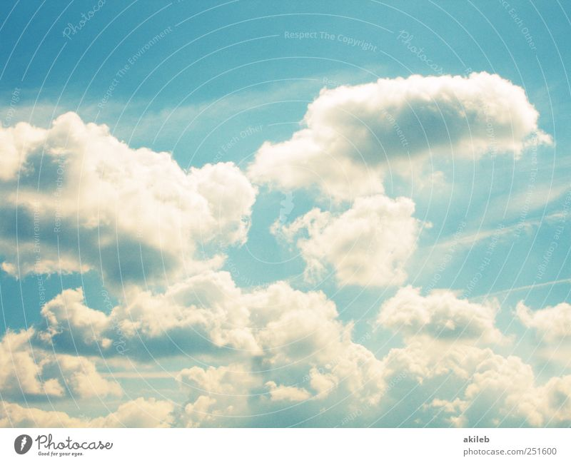 Sky Nature Summer Clouds Calm Environment Landscape Happy Air Weather Contentment Climate Happiness Beautiful weather Serene Joie de vivre (Vitality)