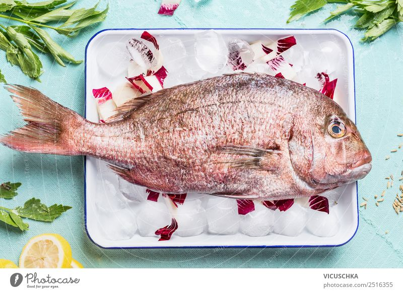 Pink Dorado on ice cubes with ingredients Food Fish Nutrition Lunch Dinner Banquet Style Design Healthy Eating Kitchen Restaurant Gourmet Cooking Lemon