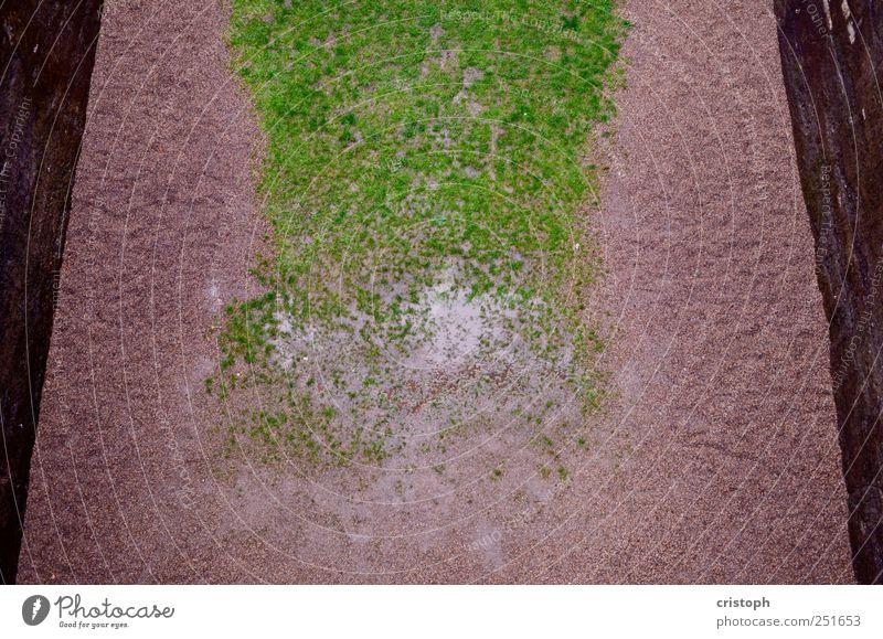 Green Meadow Wall (building) Grass Sand Wall (barrier) Park Gloomy