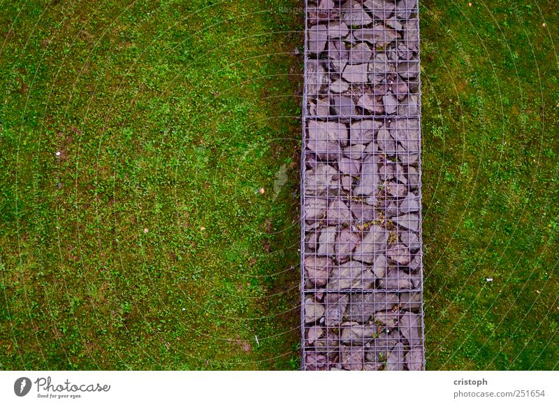 dividing line Grass Park Meadow Wall (barrier) Wall (building) Divide Border Green Contrast Structures and shapes Multicoloured Abstract Copy Space left