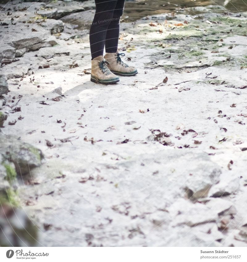 Woman Human being Leaf Autumn Adults Stone Legs Feet Hiking Stand Climbing Under Mountaineering Knee Stony Hiking boots
