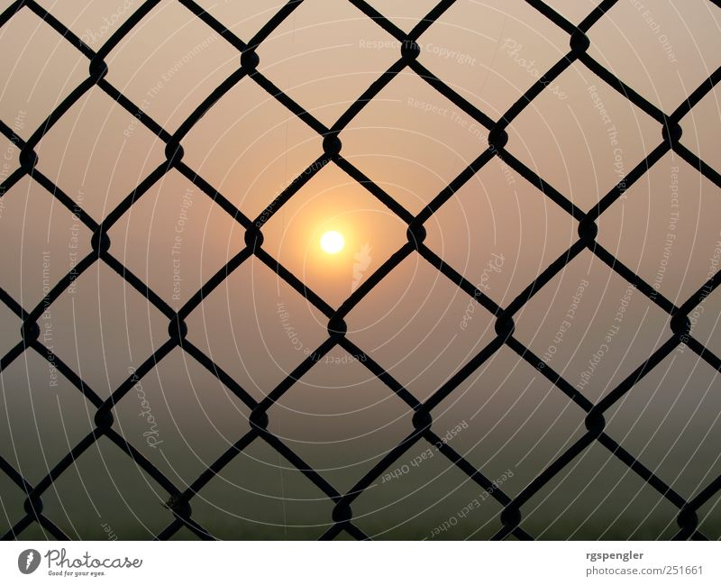 Sun in the net Air Sunrise Sunset Sunlight Climate Weather Fog Meadow Field Metal Exceptional Calm Discover Symmetry Colour photo Exterior shot Deserted