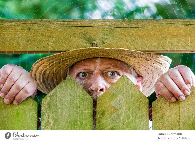Human being Man Face Adults Senior citizen Masculine 60 years and older Observe Curiosity Male senior Aggravation Surveillance Grouchy Envy Mistrust Animosity