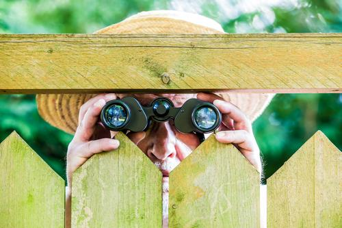 a curious neighbor with binoculars Human being Masculine Man Adults Male senior 1 Nature Garden Park Hat Straw hat Observe Threat Curiosity Discordant