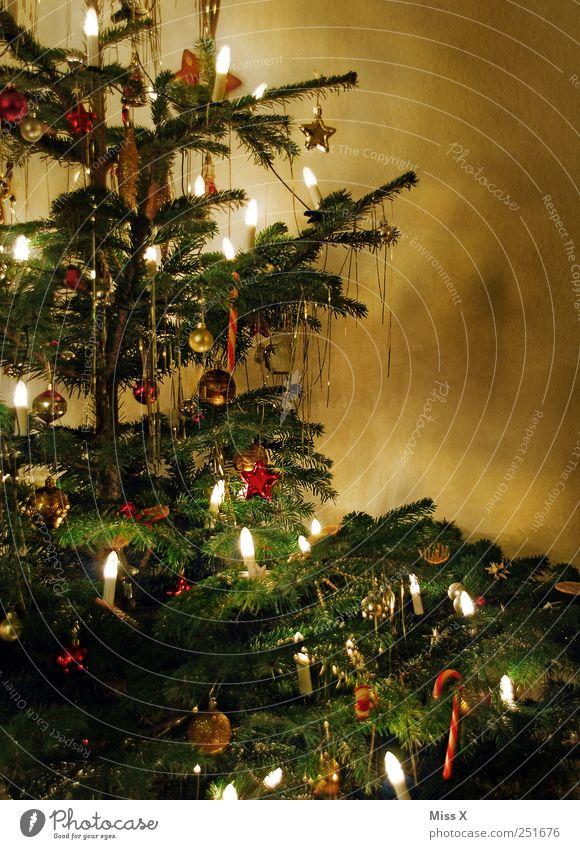 Christmas & Advent Tree Winter Moody Feasts & Celebrations Glittering Candle Decoration Illuminate Christmas tree Jewellery Fir tree Glitter Ball