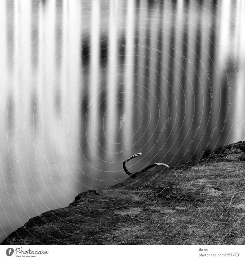 reflections Art Environment Nature Water Coast River bank Main Emotions Happiness Contentment Cologne Fine Art Black & white photo black Square 6x6