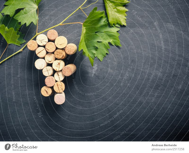 Bottle cork as grapevine with vine leaves Beverage Wine Sparkling wine Prosecco Champagne Blackboard Delicious Cork bunch winery table leaf green concept old