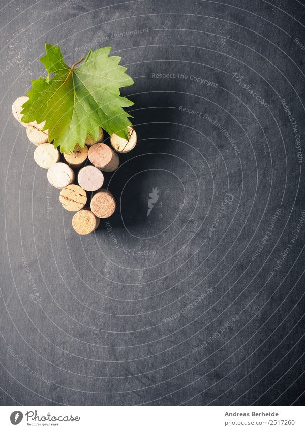 Bottle cork as grapevine with vine leaf on a blackboard Beverage Wine Blackboard Delicious organic natural Material twig bunch winery table red green space old