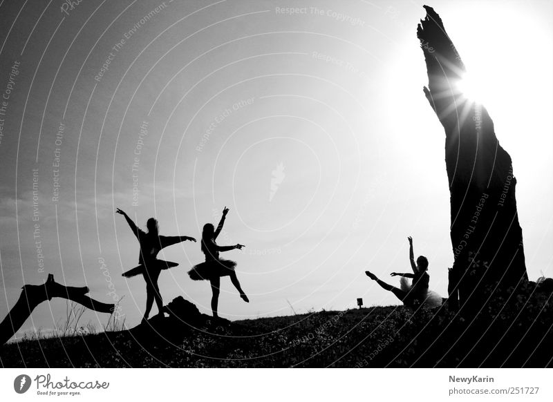 Human being Tree Sun Feminine Freedom Movement Friendship Dance Elegant Esthetic Shows Stage play Theatre Audience Harmonious