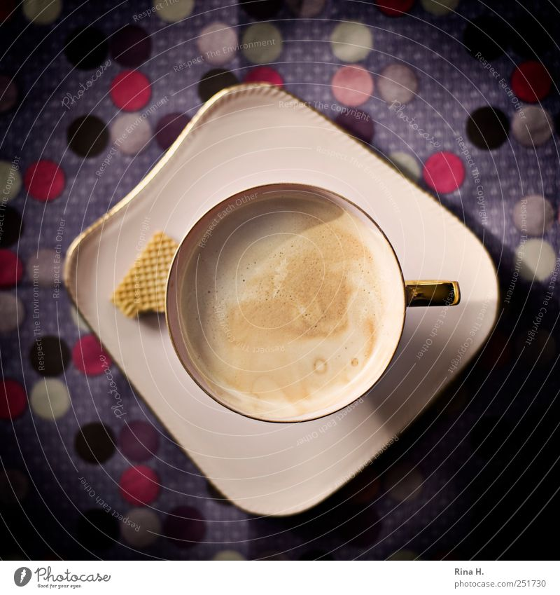Crema de la Crema Cookie Beverage Hot drink Coffee Crockery Plate Cup Esthetic Delicious Multicoloured Violet Pink To enjoy Coffee cup Spotted Point Pattern
