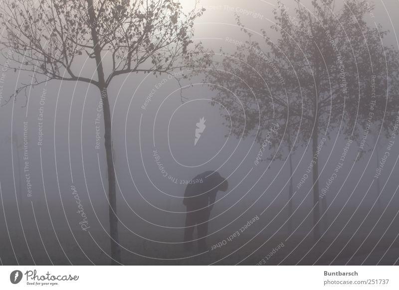Man Tree Loneliness Dark Gray Adults Sadness Fear Fog Dangerous Gloomy Stand Threat Grief Longing Creepy