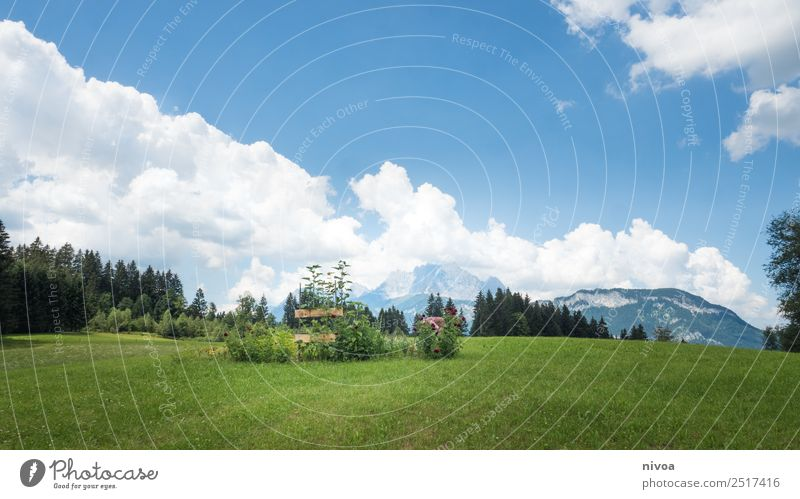 Landscape in Austria and the Wilder Kaiser Vacation & Travel Trip Adventure Far-off places Freedom Summer Summer vacation Mountain Hiking Human being 1 Nature