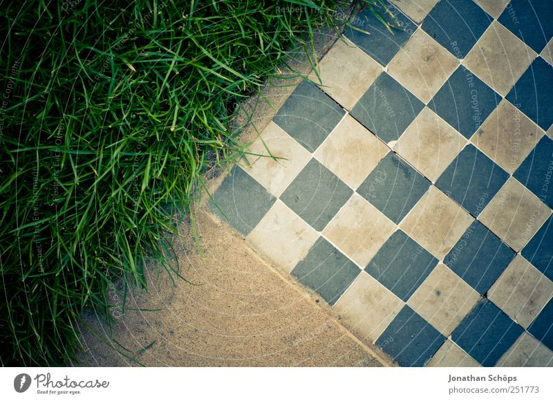Blue Green White Meadow Playing Grass Style Stone Art Brown Leisure and hobbies Planning Point Simple Playing field Square