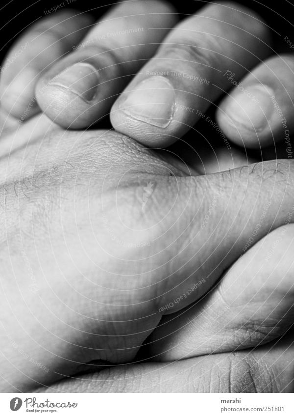 loving hands Human being Masculine Skin Hand Fingers Soft Nail Detail Men`s hand Groomed Wrinkles Black & white photo