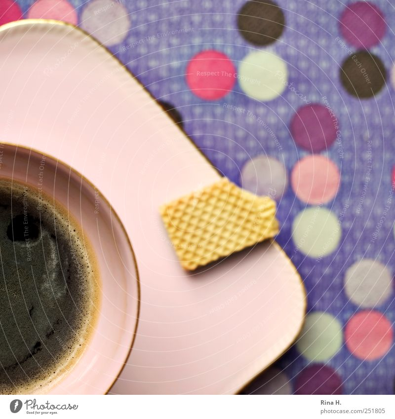coffee break Cookie Hot drink Coffee Crockery Plate Cup Delicious Multicoloured Violet Pink To enjoy Point Spotted Pattern Colour photo Interior shot Deserted
