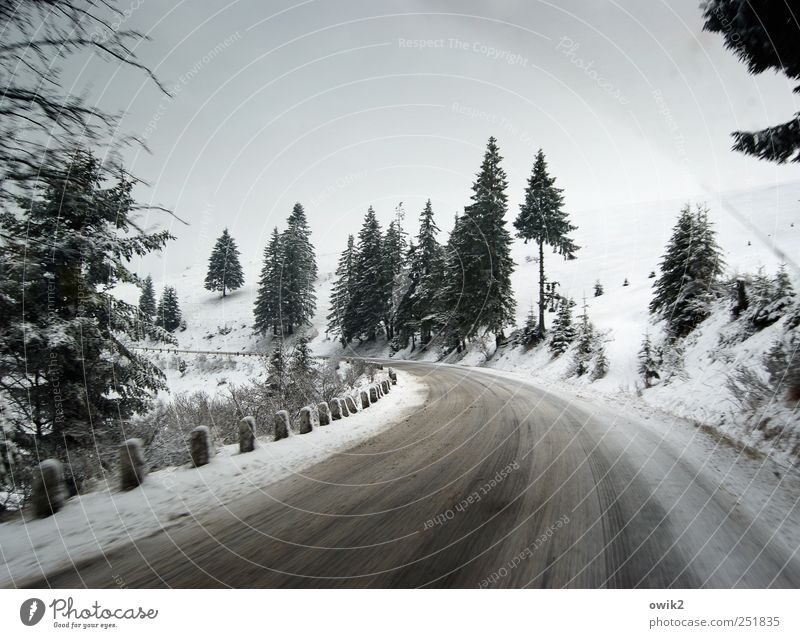 winter road clearance Far-off places Travel photography Itinerary Environment Nature Landscape Plant Sky Horizon Winter Climate Beautiful weather Ice Frost Snow